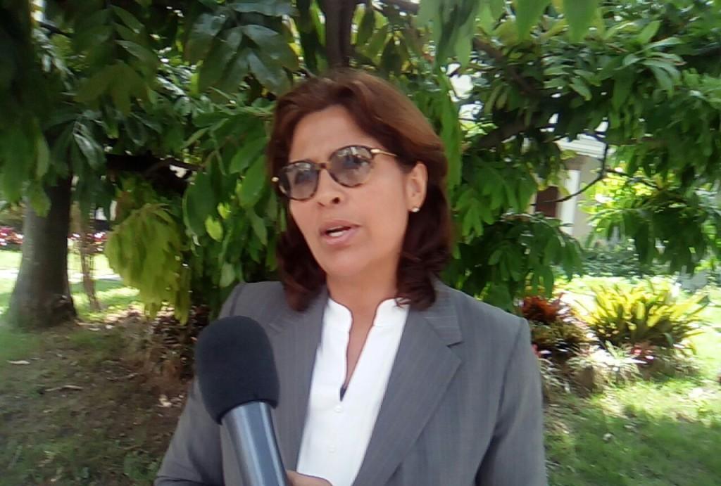 Diputada María Gabriela Hernández. (Foto: Prensa Unidad)