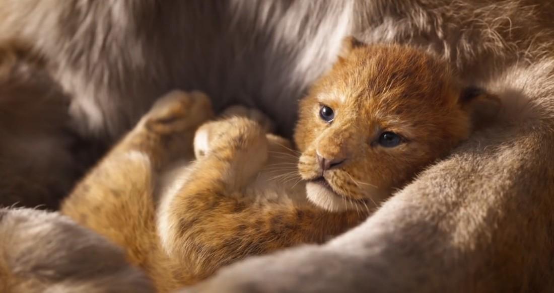 rey leon2
